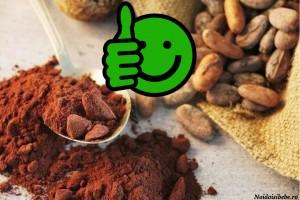 bobul si pudra de cacao raw
