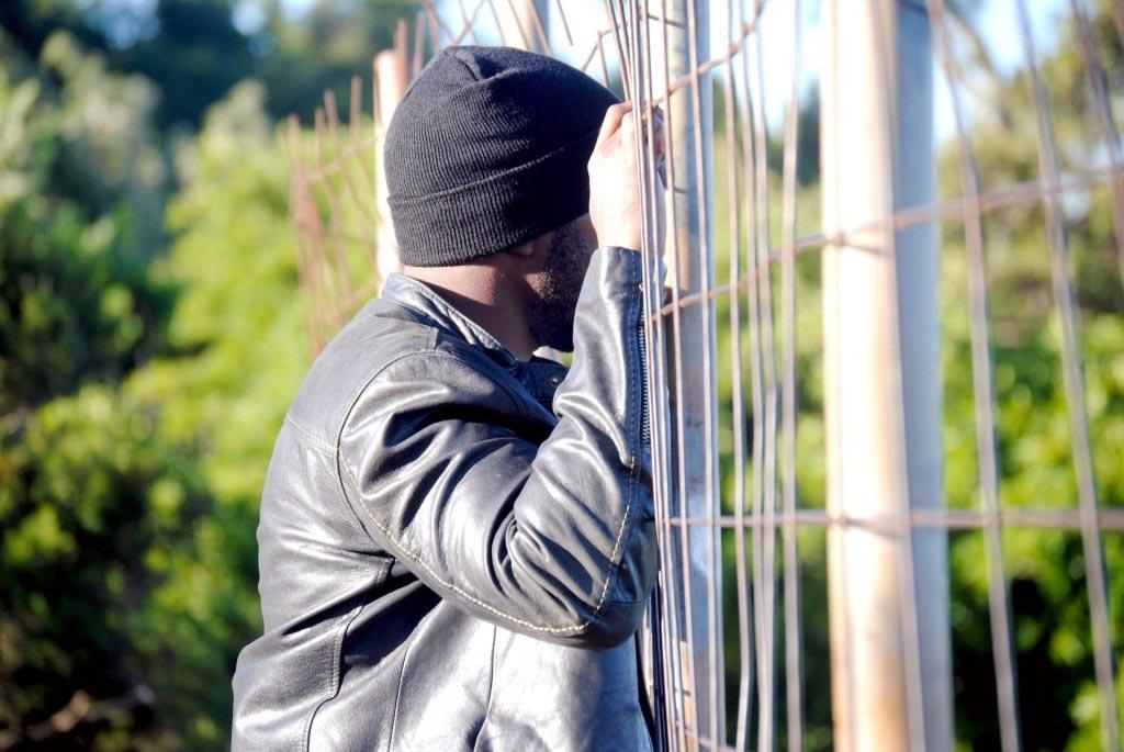 privitul peste gard