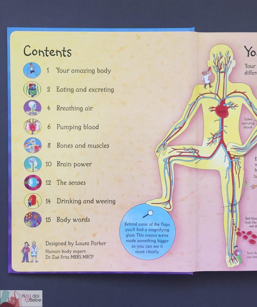 Carte Pentru Copii Despre Corpul Uman See Inside Your Body