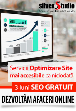 Optimizare SEO SilvexStudio